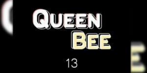 ราชินีผึ้ง(13)
